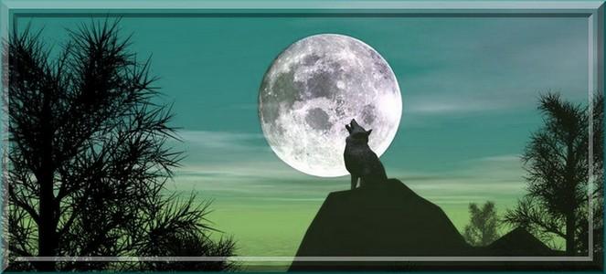 Les loups garous de Thiercelieux Index du Forum