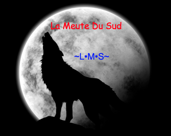 La Meute Du Sud Forum Index