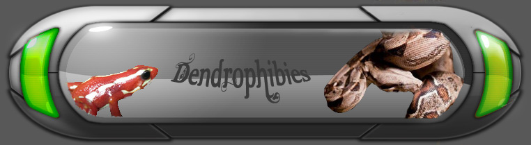 dendrophibies Forum Index