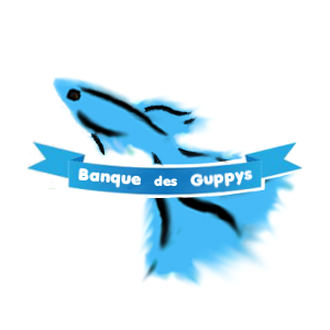 Banque des Guppys Index du Forum