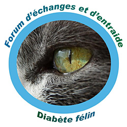 Diabète du chat Index du Forum