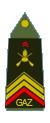 Caporal-chef de première classe