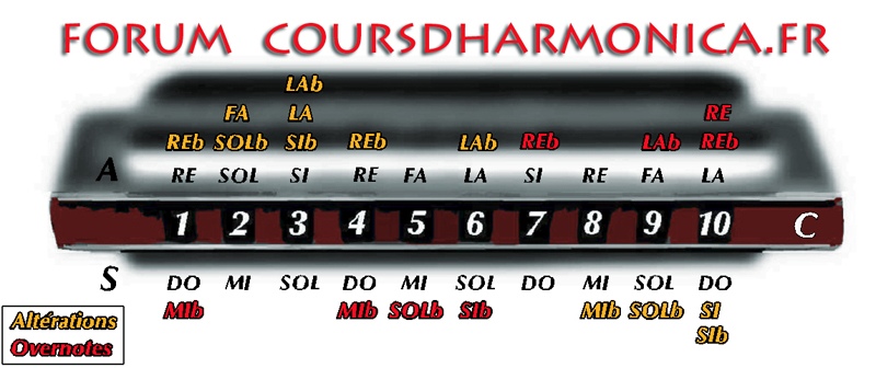 Forum du site coursdharmonica.fr Forum Index