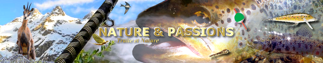 NATURE ET PASSIONS Forum Index