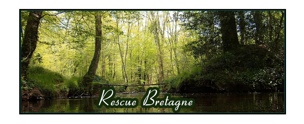 RESCUE BRETAGNE ::Protection de la biodiversité et de l'environnement Index du Forum