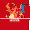●• Leader •●