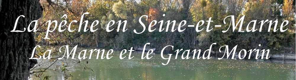 FORUM DES PECHEURS DE SEINE-ET-MARNE Index du Forum
