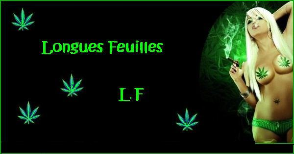 Forum de l'alliance ~L.F~ Forum Index