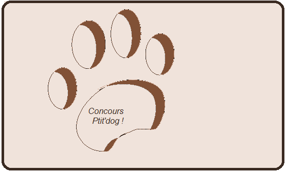 concour de ptitdog Index du Forum