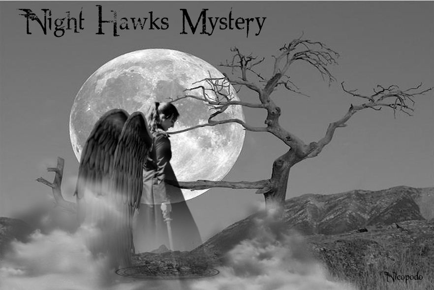 Night Hawks Mystery Index du Forum