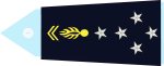 généraux de l'alliance