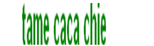 Team Caca Chie Forum Index