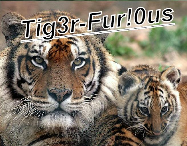 http://la-teamtiger-furious.xooit.fr Index du Forum