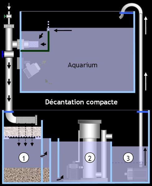 aquario philrecifal cuve technique sur rsm