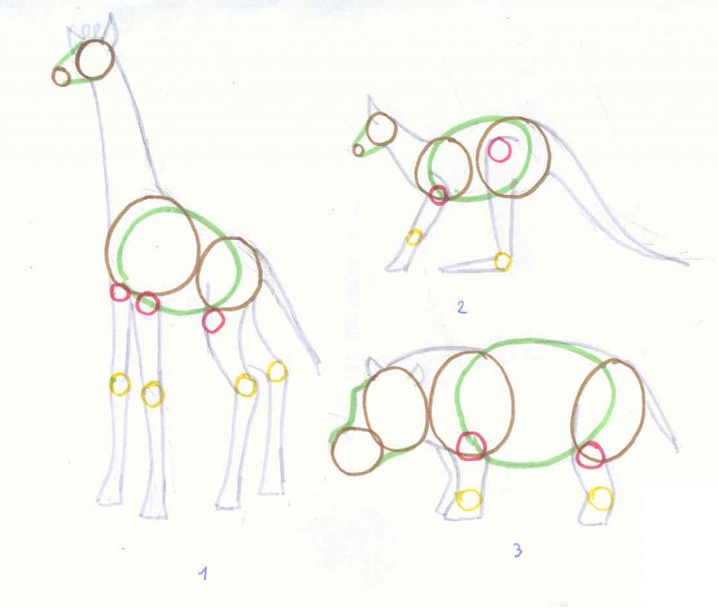 Apprendre dessiner ensemble ecrire un tutoriel - Dessiner un kangourou ...
