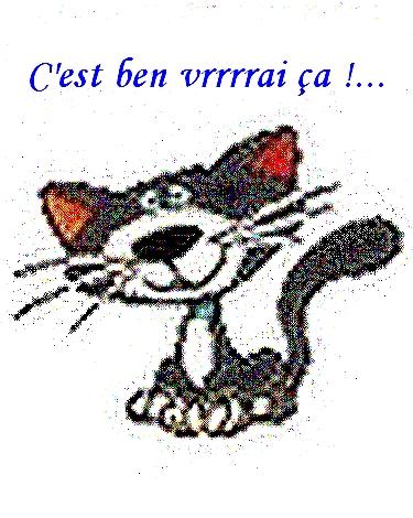 Bonjour, bonsoir, vos humeurs du jour  ;) - Page 3 C-est-ben-vrai-a.-2-..-311076f