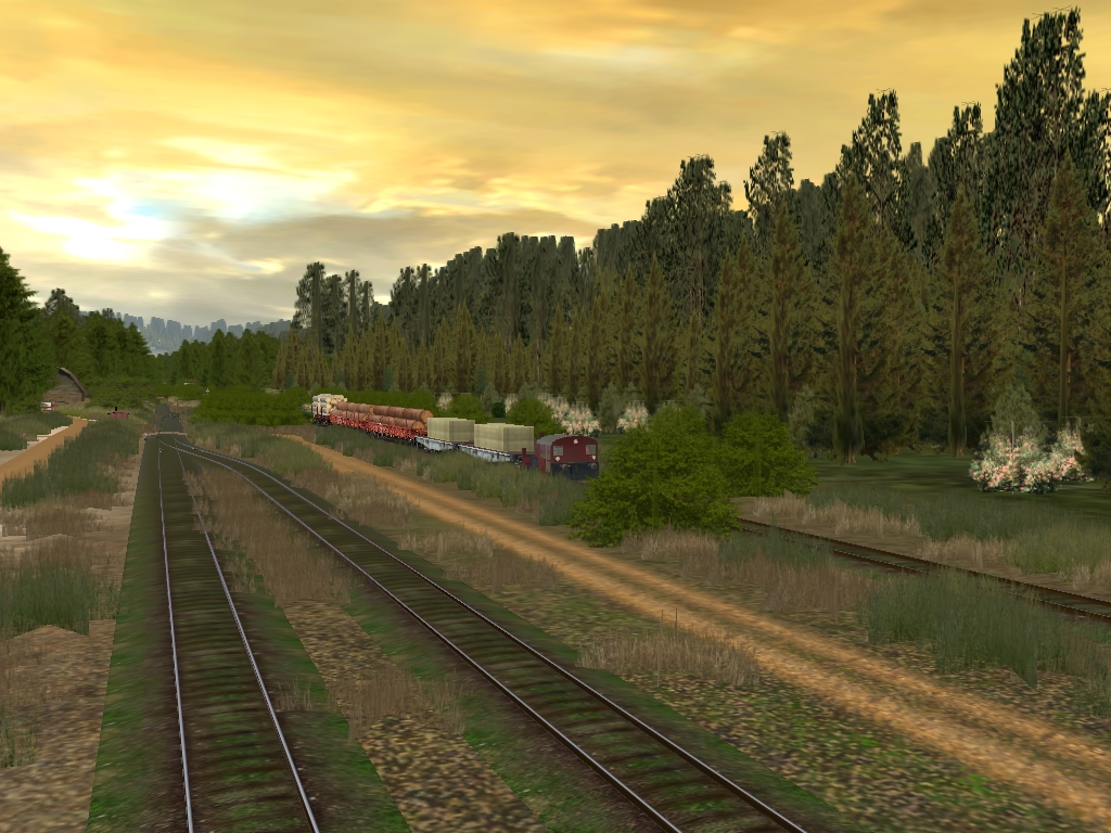 Auran Trainz 2009 Downloads - cookiexsonar