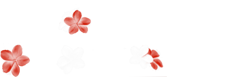 Alliance Flower Index du Forum