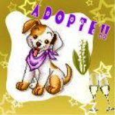 Adoptésnoopy
