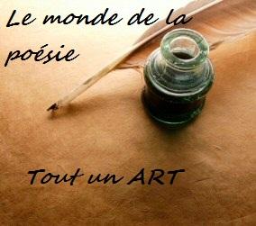 La Poesie Tout Un Art Moi Petite Plume