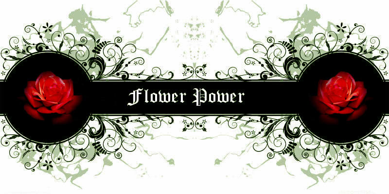 Guilde des Flower Power sur Fenris Online Index du Forum