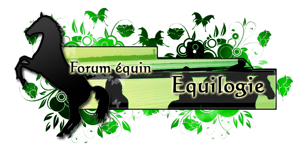 Equilogie Forum Index