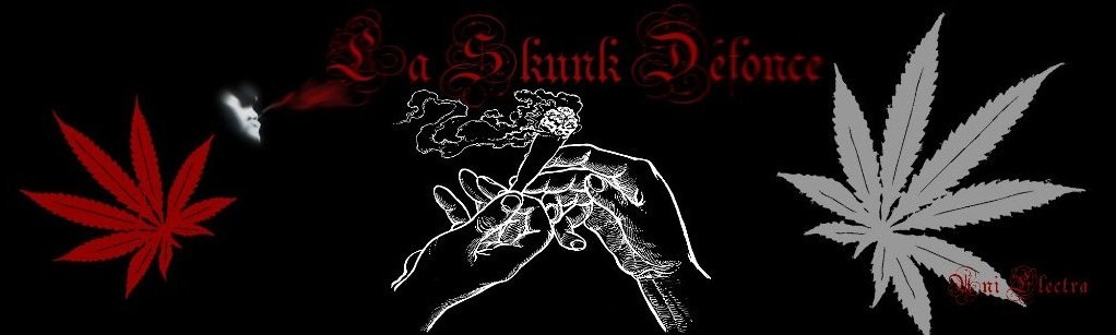 la skunk defonce Index du Forum