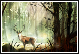 Forêt interdite
