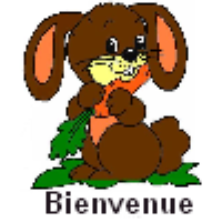 Les Lapins  Index du Forum