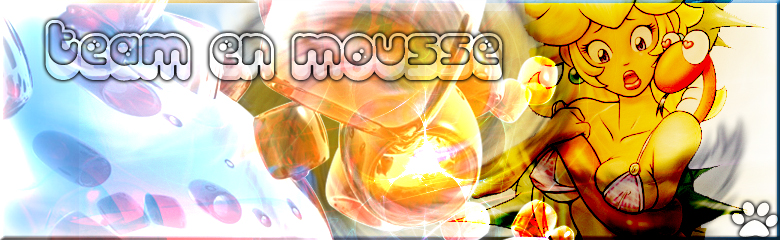 Team en Mousse  Index du Forum