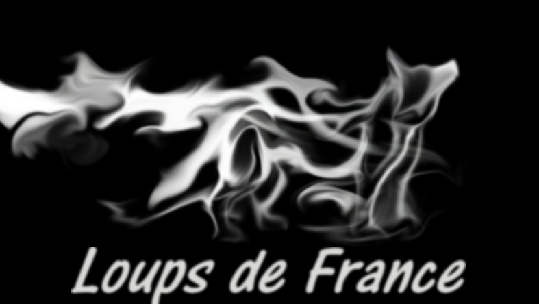 loups de france Forum Index