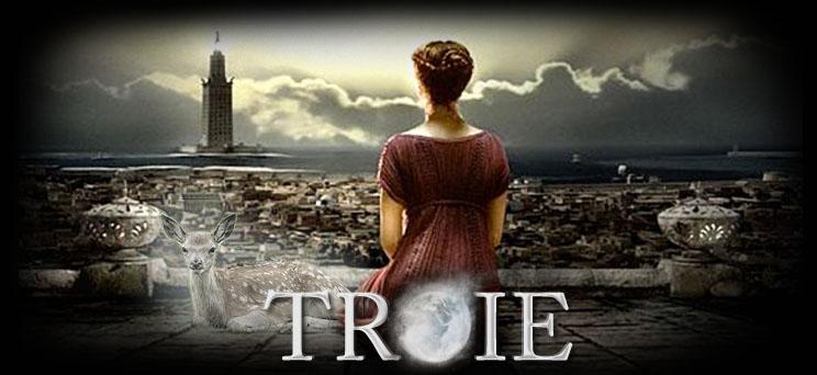 Troie : la fin d'une cité