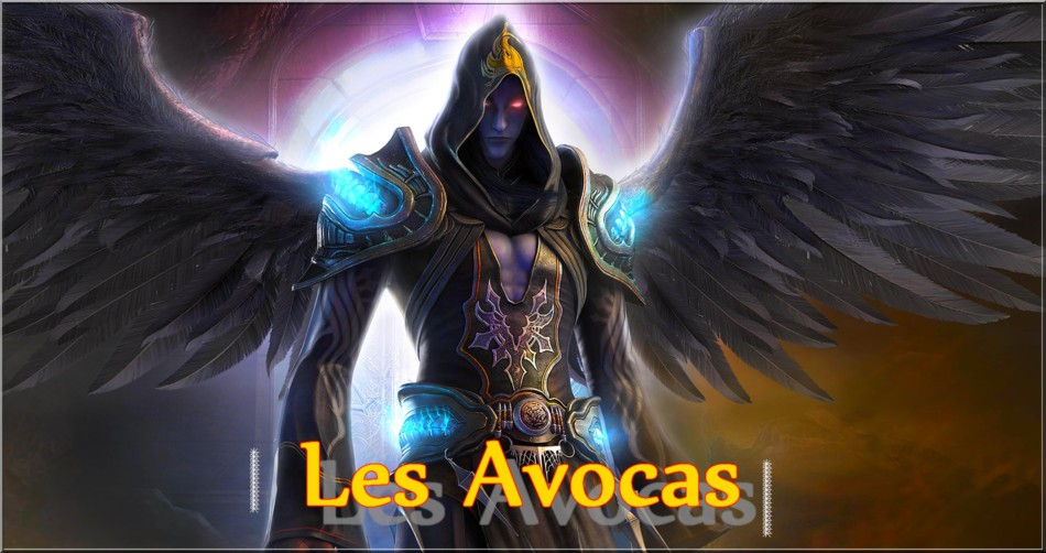 LES AVOCAS Index du Forum