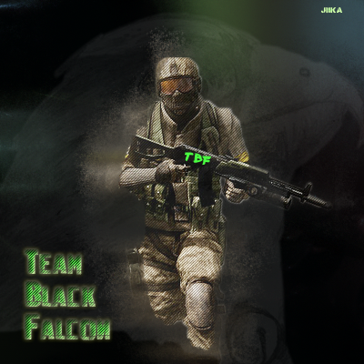 TEAM BLACK FALCON Index du Forum