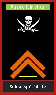 Soldat spécialisé