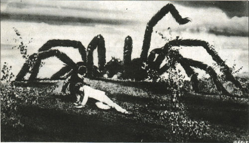 1975   L Invasion des araignées géantes (The Giant Spider Invasion), de Bill  Rebane Suite à l impact d un météore venu du fin fond de l espace, ... a970cdcc0426