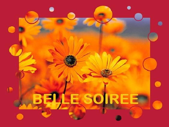 BONNE SOIREE DE MARDI Belle_11-2a13704