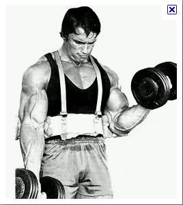 power club tarare .::. Les biceps