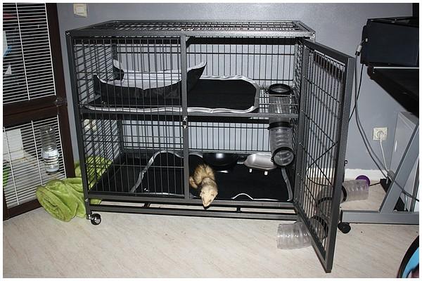 forum furet furet mania nouvelle cage extension page. Black Bedroom Furniture Sets. Home Design Ideas