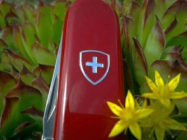 Ma collection Victorinox et wenger. [par Lucke] 205417_3800044893...842946_n-358fb00