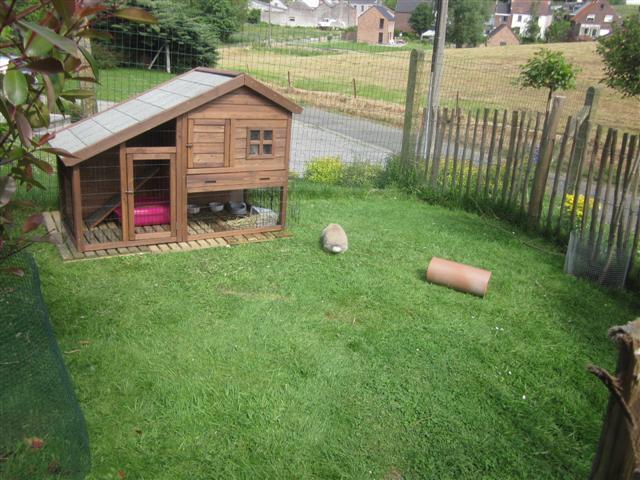 Rabbit forever l 39 enclos ext rieur de teddy et savana for Enclos exterieur pour lapin