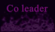 Co-Leader.