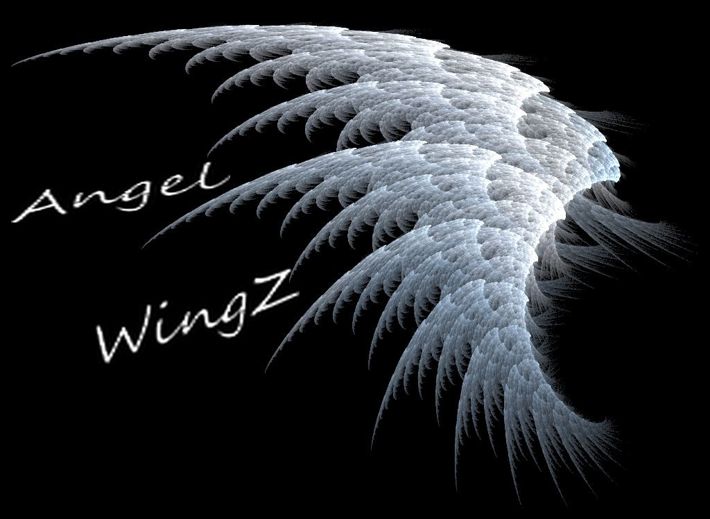 angel wingz Index du Forum