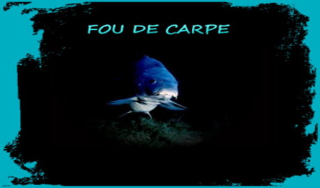 Fou de Carpe Index du Forum