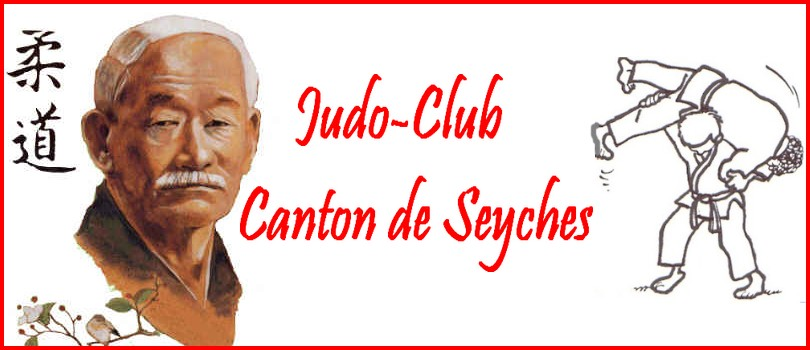 judo club canton de seyches Index du Forum