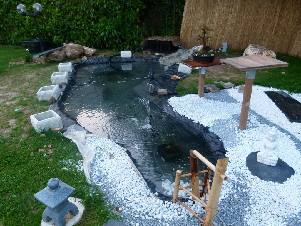 Club bonsa de l vis st nom carpes koi for Geotextile pour bassin