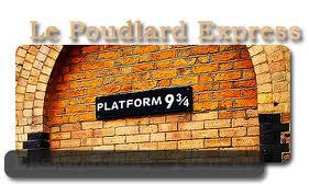 Mon arrivée à Poudlard Voix-9-et-demi-33082ac