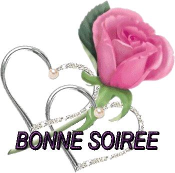 bonjour bonsoir du mois d'aout Bonne-soir-e-avec-une-rose-3534dfd