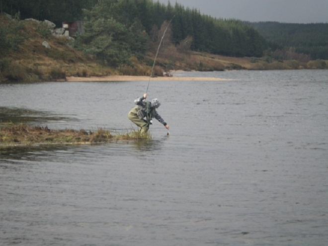 Yandeks market tout pour la pêche