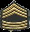 <b><font color=#5C5858>Sergent Major</font></b>